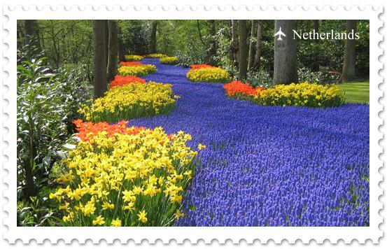 Парк Кеукенхоф – самый большой цветочный парк в мире