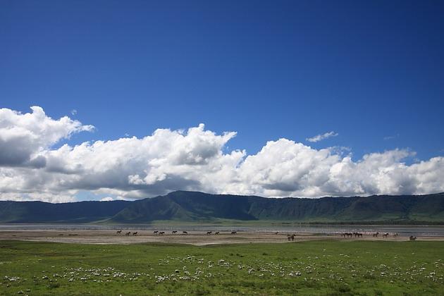 национальный парк Нгоронгоро