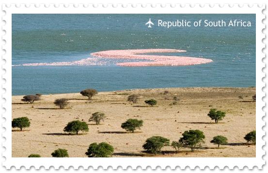 Остров фламинго