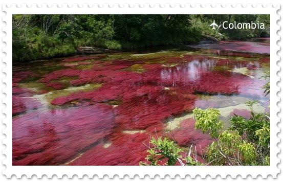 Волшебная река Каньо Кристалес