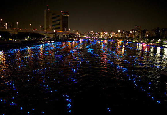 Tokyo Hotaru Festival 2012