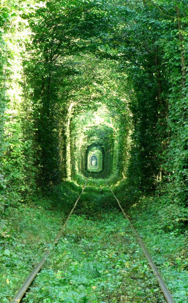 Тоннель любви. Клевань, Украина