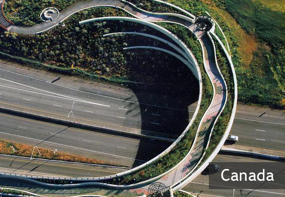 Ванкуверский надземный мост